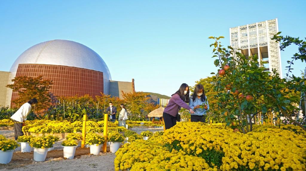 경주엑스포공원을 찾은 관광객들이 '행복한 텃밭정원'을 관람하고 있다.